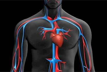 Lee más sobre el artículo ¿Qúe es el índice glucémico?