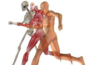 ¿Qué es lo mejor para tus huesos?