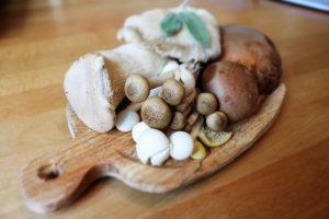 5 beneficios para la salud de los hongos comestibles
