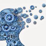 deterioro cognitivo y vitaminas y minerales