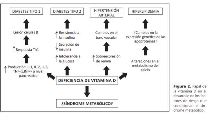 VITAMINA D y diabetes