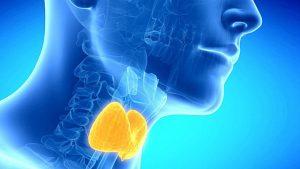 Tratamiento para la Resistencia a la Hormona Tiroidea